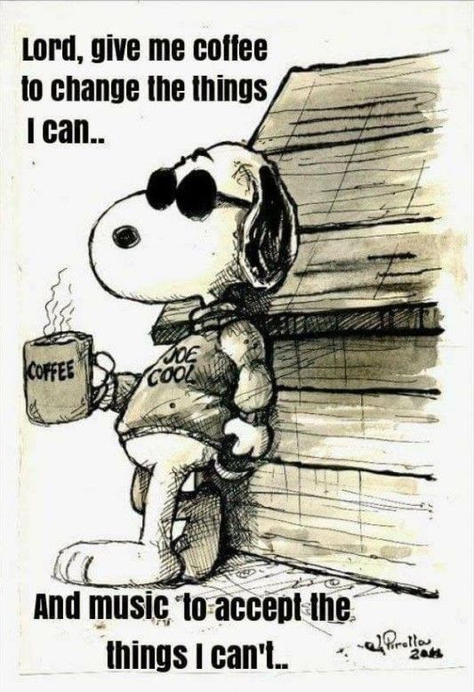 Pin By Janet Schafer On Music Snoopy Quotes Christmas Quotes Funny Snoopy Funny