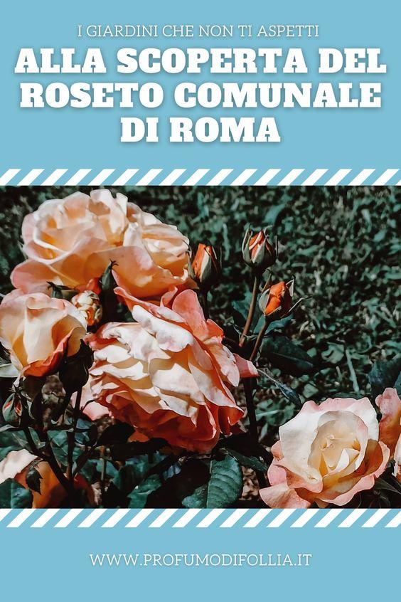 Roseto comunale di Roma: immagine Pinterest