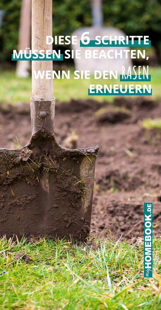 In 6 Schritten Den Rasen Erneuern Rasen Erneuern Rasen Gruner Rasen