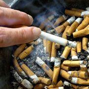Zigaretten: Langzeitstudie verdeutlicht Folgen des Rauchens