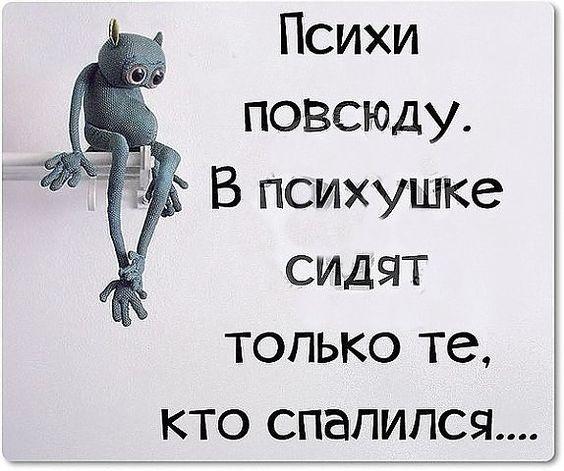 психи повсюду в психушке сидят только те кто спалился: 3 тыс изображений найдено в Яндекс.Картинках