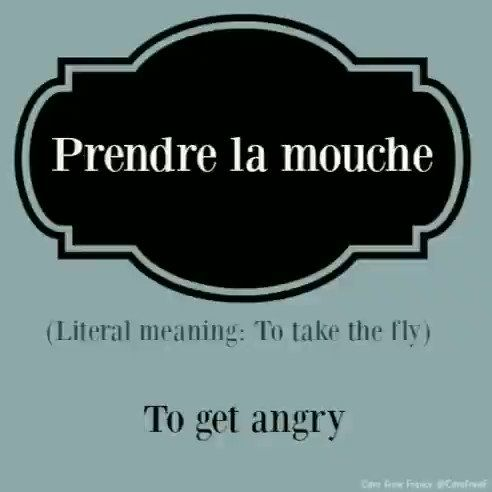 caro from france on twitter pronunciation and meaning of a french idiom prendre la mouche learnfrench fle learn french idioms france pinterest