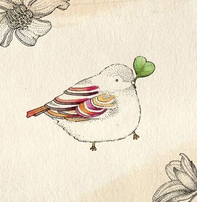 love bird illustration