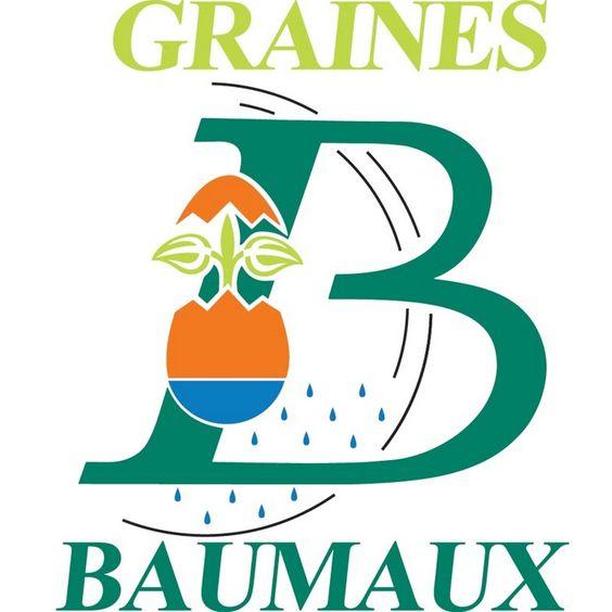 Plus de 150 #vidéos de conseil de jardinage - Graines Baumaux sur Youtube