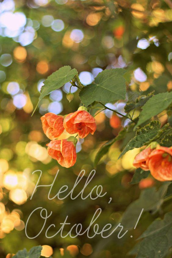 Hello October!: