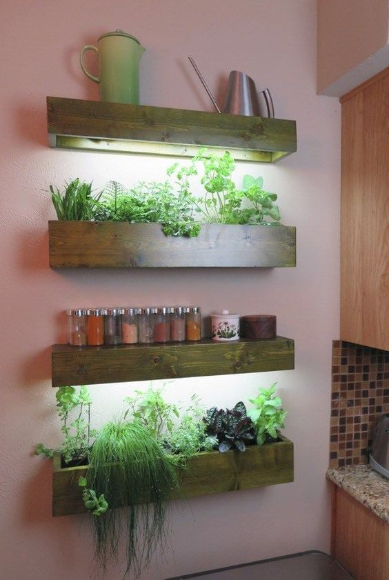 Lighted indoor wall planters #gardenIdeas #garden #gardening #plants #homeDecor #indoor #shelves