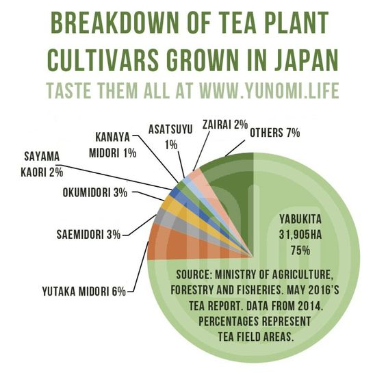 Breakdown of tea plant cultivars most commonly grown in Japan