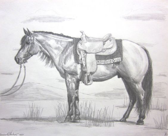 horse pictures drawn in pencil dating