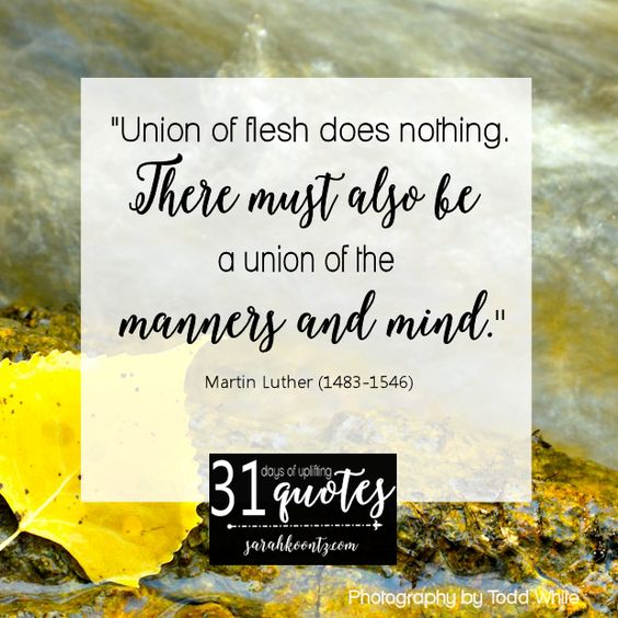 "Day 7 Quote. Martin Luther on Marriage: 7 quotes in 7 days. Martin lovingly called his wife ""Kitty, my rib"" and declared marriage ""a school for character."" #write31days"