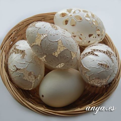 Actual eggs, delicate in every way!: