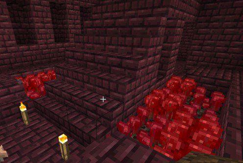 How To Build A Nether Wart Farm In Minecraft Minecraft Bird Houses Farm