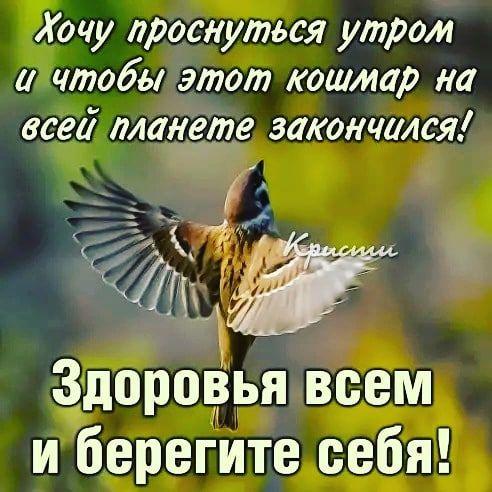 "1,242 отметок ""Нравится"", 7 комментариев — Natalia Elkhova (@elkonatalia) в Instagram"