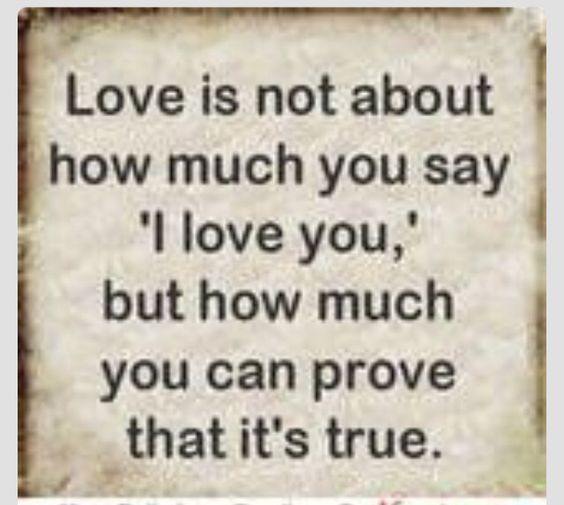 I Love You More Than Quotes: Pinterest • The World's Catalog Of Ideas