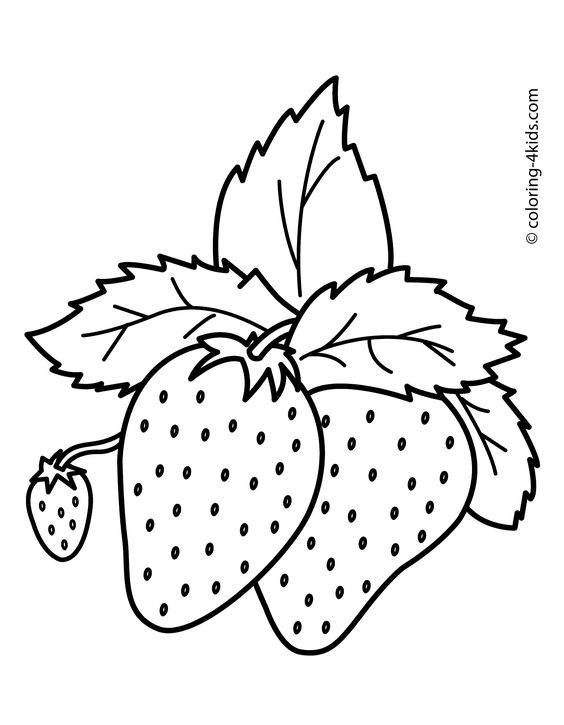 simple fruit coloring pages - photo #8