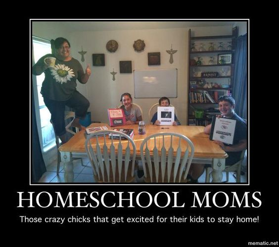 Why are people so judgemental towards home schooling?