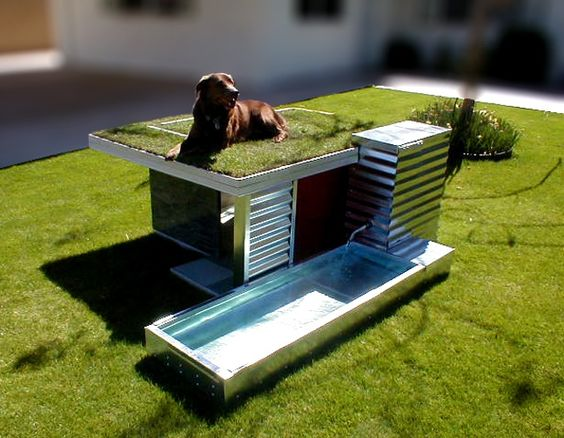 Amazing modern dog house with rooftop garden and pool! #doghouse Amazing Dog Houses and Adorable Puppies to Pin