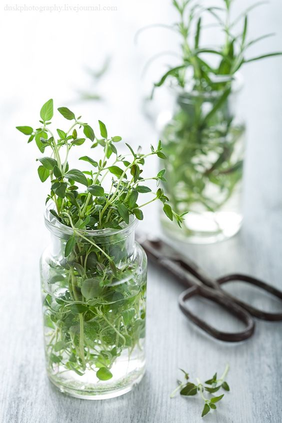 Clippings from your garden can make for good table settings.