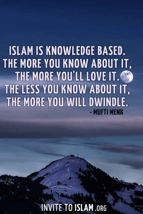 People who seek knowledge are the real winners, they get their rewards in this life and in the life after death. Islamic Quotes On Education Calming Quotes