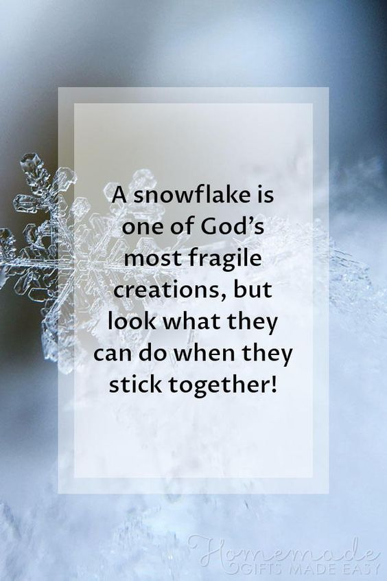Christmas Quotes | A snowflake is one of God's most fragile creations, but look what they can do when they stick together!