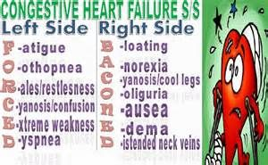 congestive heart failure information - Yahoo Search Results Yahoo Image Search Results