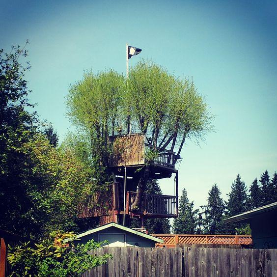 Super Cool Tree House In Auburn Washington Treehouses
