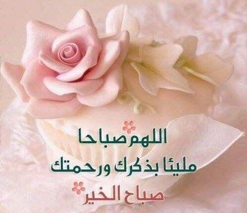 صباح مشرق بنور الله والاقبال على الله صباح مملوءا بالعطاء والتوجه إلى رب السماء أن يحفظنا النعم ويدفع ع Good Morning Flowers Morning Flowers Love Words