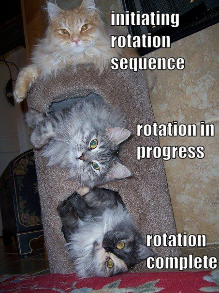 Rotation sequence.