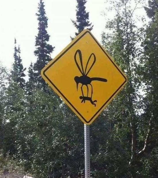 ☻☻☻ FUNNY SIGNS ☻☻☻ ~ When they told me the mosquitoes are really bad, they weren't kidding: