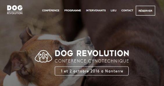 Dog Revolution : 2 jours pour comprendre le comportement canin et mieux l'appréhender  La « Dog Revolution » aura lieu les 1er et 2 octobre prochain à l'université de Nanterre (Paris X). Un événement exceptionnel, dont Wamiz est partenaire, qui permettra d'échanger sur le comportement canin et ses enjeux dans notre société.