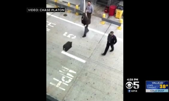 Alaska Airlines Admits San Jose Airport Workers Played Bag Toss Game With Luggage - http://www.airline.ee/alaska-airlines/alaska-airlines-admits-san-jose-airport-workers-played-bag-toss-game-with-luggage/ - #AlaskaAirlines