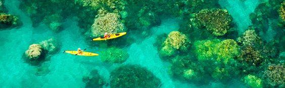 Snorkeling, Kayaking from Kailua Beach
