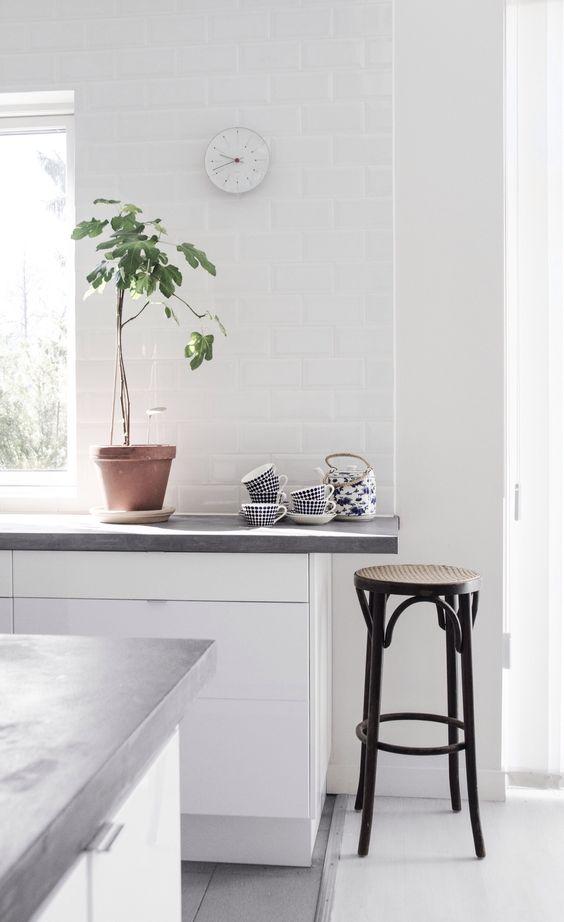 Bänkskiva i betong, fasat kakel med vit fog och ett fikonträd: