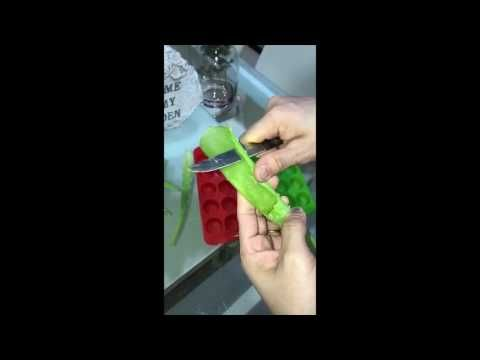 طريقة استغلال اوراق الصبار في خلطات التجميل وصفات رهيبة لتغذية البشرة و الشعر Feuilles De Cactus Youtube