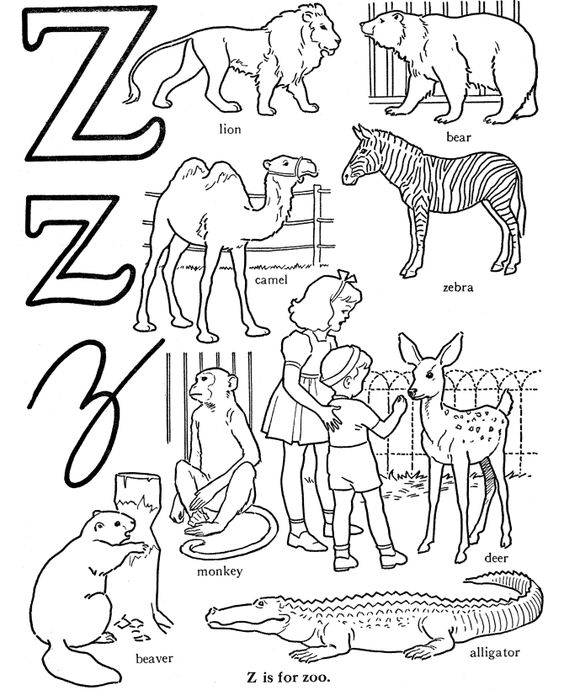 Alphabet Words Coloring Activity Sheet | Letter Z - Zoo ...