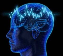 : Cannabis use may produce psychosis-like effects and increased neural noise in humans which disrupts the brain's normal information processing.