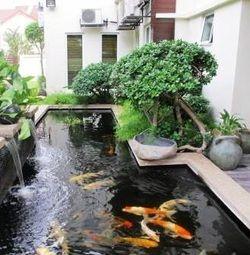 Awesome formal koi pond backyard pond 39 s waterfalls for Awesome koi ponds