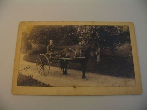 EJ Smith Sherborn Mass. Horse + Buggy Whip Boudoir Cabinet Photograph Grout