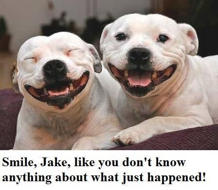 No, no...don't force it like that, smile gently or they will KNOW we did it, not just suspect. Do it right, Jake
