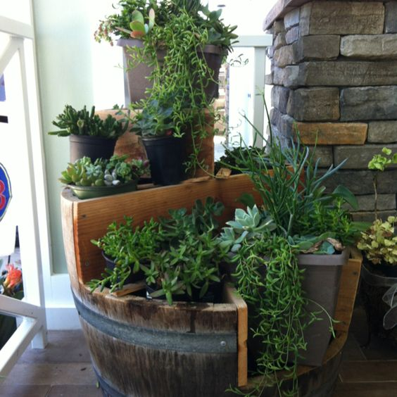 Wine Barrel Succulent Garden