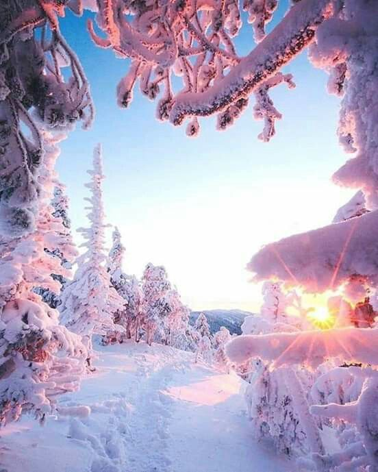 When You Get First Tracks On The Slope As The Sun Rises It S The Closest Thing To Heaven On Earth There Is Winter Scenery Winter Landscape Winter Scenes