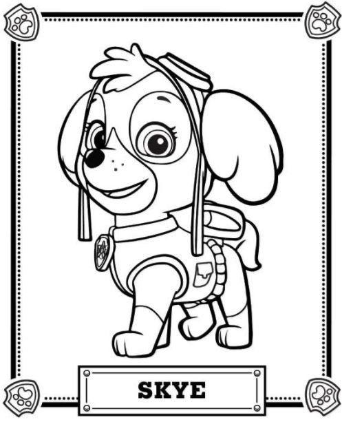 Patrulla Canina Para Colorear Marshall Skye Con Imagenes