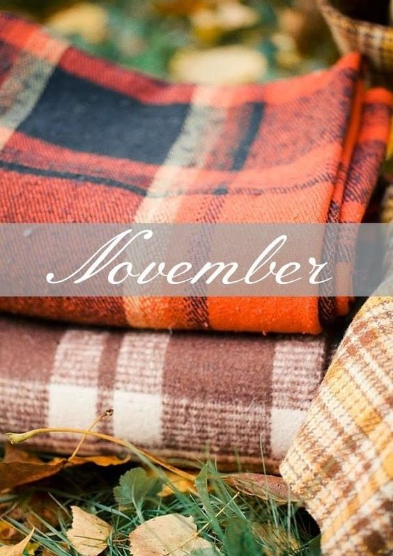 5 Things To Do In November