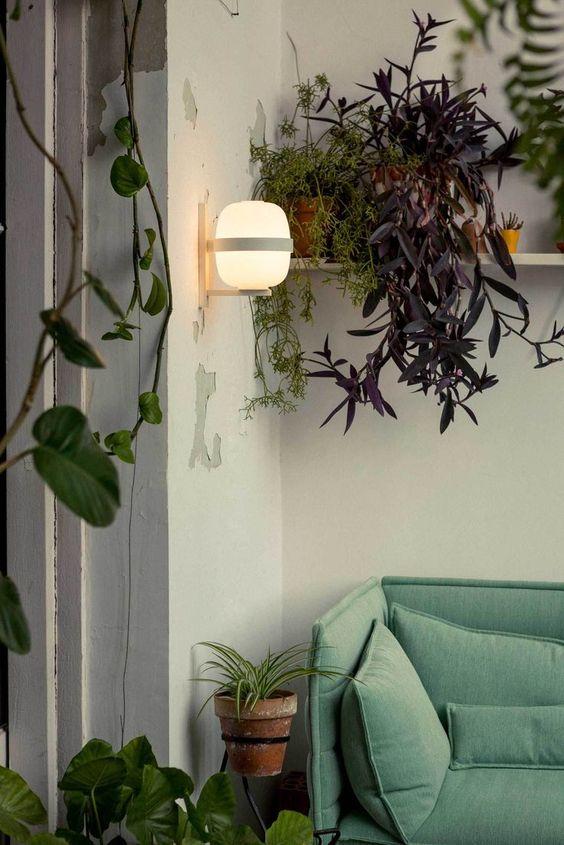 鉢カバー テラコッタ インテリア コーディネート例 観葉植物