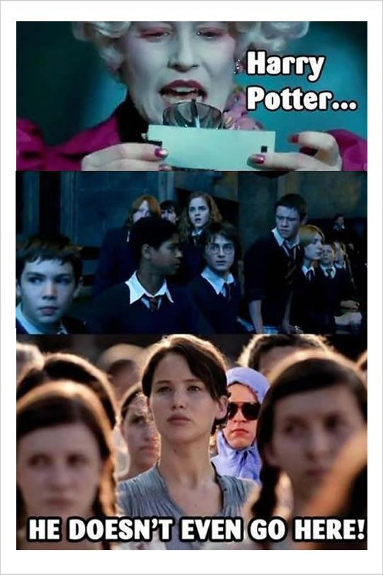 It S Been 20 Years Since The First Harry Potter Book Was Published People On The Internet Keep On Making Funny Har Hunger Games Humor Hunger Games Movie Memes