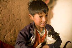 Twaalf foto's vertellen je meer over het leven van de Boliviaanse Elmer en zijn speelkameraad en poes Perico.