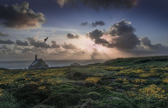 FRENCH BRITTANY MOOR by Jean-Marie HERMANT on 500px