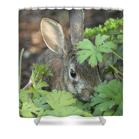Made from 100% polyester fabric and include 12 holes at the top of the curtain for simple hanging. total dimensions are 71' wide by 74' tall  #shower #showercurtain #homedecor #bathroom #bath