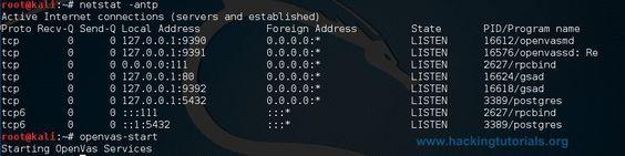 OpenVAS -antp configuração netstat
