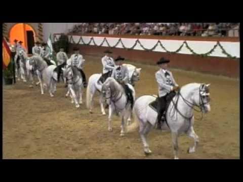 Royal Andalucian School of Equestrian Art