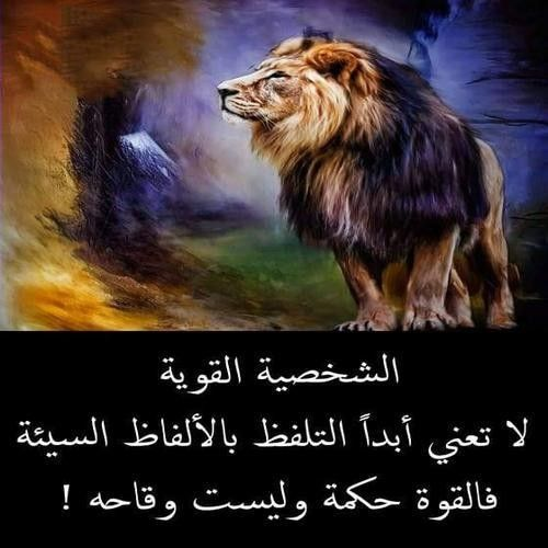 Pin By Nadaqune777 On Gold Ali Quotes Arabic Quotes Wonderful Words